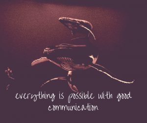 everything-is-possible-with-good-communication